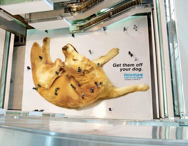 Văn bản trong quảng cáo được xem nhiều hơn hình ảnh