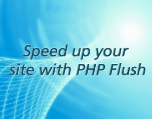 speed-up-php-flush-300x235