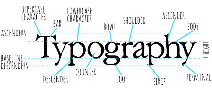 typography-diagram2