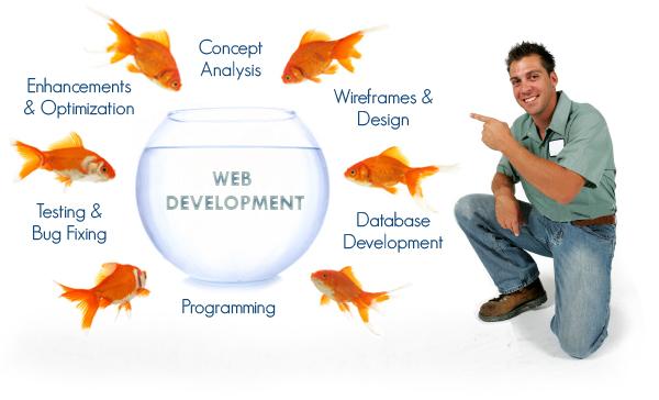 wpid-web-design